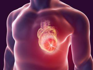 Сколько стоит сердце человека в России