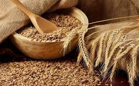 Сколько стоит зерно пшеницы и где его купить